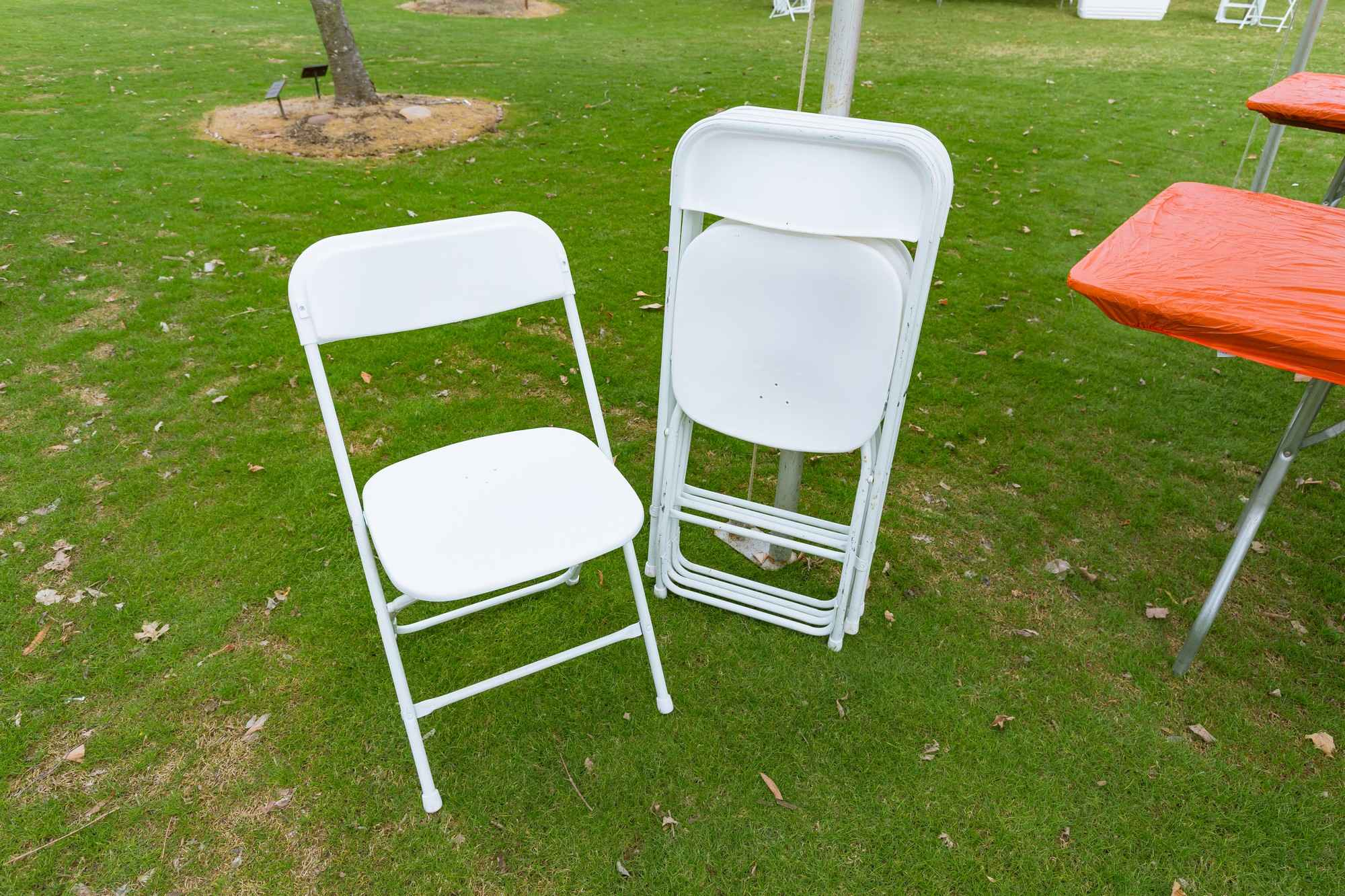 Folding Chairs (set of 10)