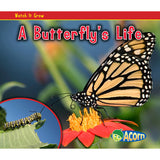 A BUTTERFLYS LIFE - Honor Roll Childcare Supply