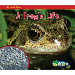 A FROGS LIFE - Honor Roll Childcare Supply