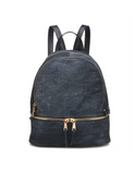 Monogram Blaze Backpack