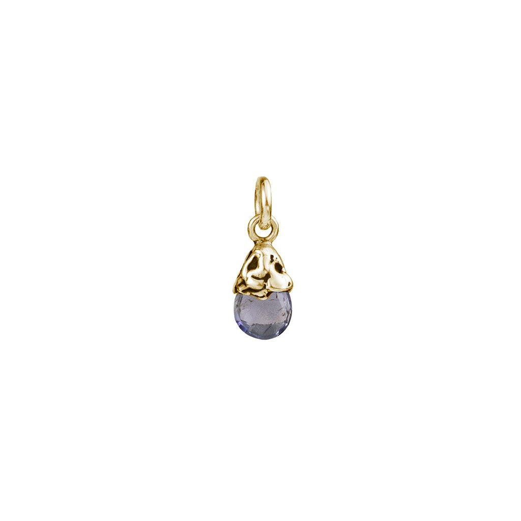 Creativity 14K Gold Capped Attraction Charm | Magpie Jewellery