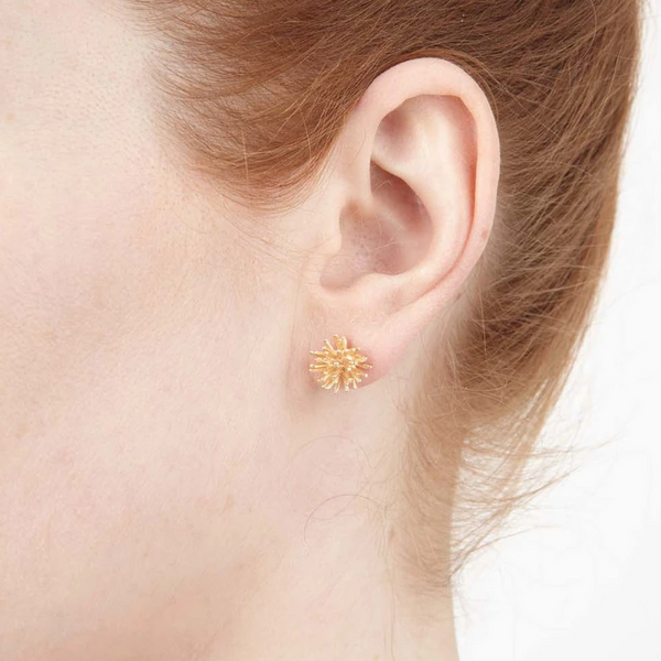 Gone to Seed Stud Earrings - Gold