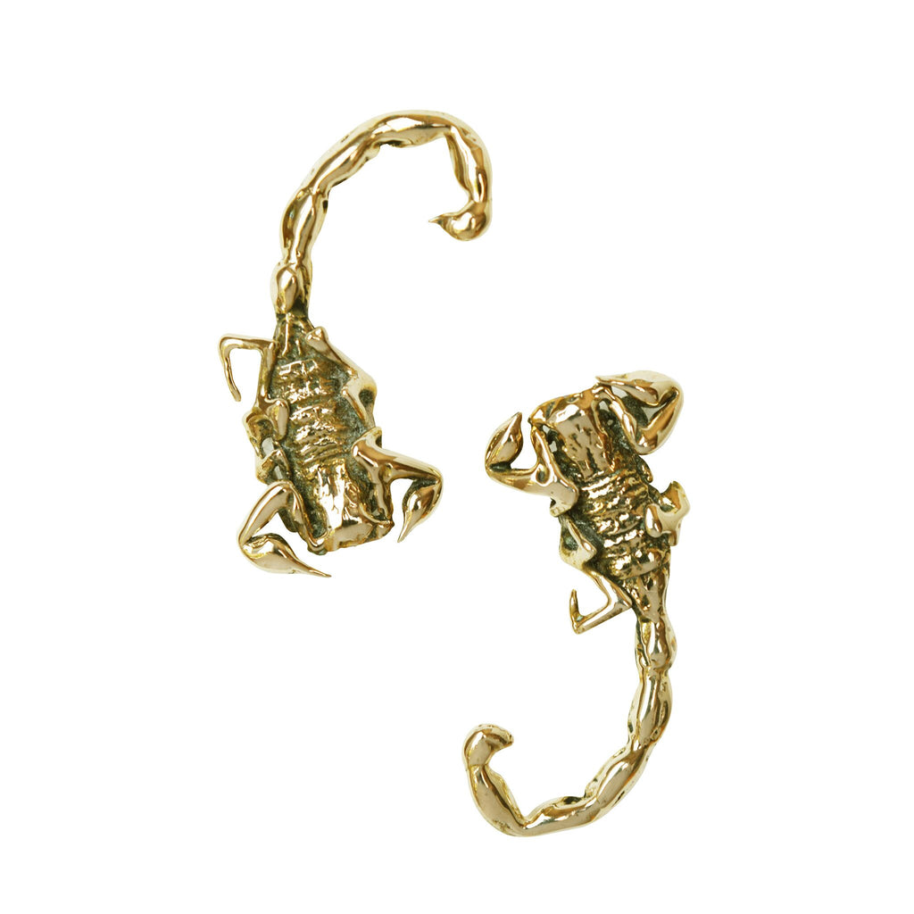 Scorpion Stud Earrings | Magpie Jewellery-Brass