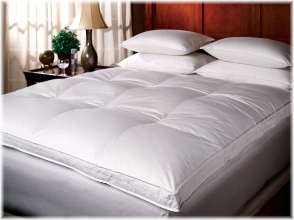 Luxe & Luna™ Goose Down-Top Featherbed