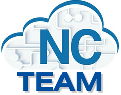 Numerical Cloud Team - Annual Plan (10-Person License)