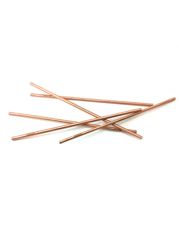 Tamra Copper Straws