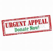 LICC URGENT Spring Appeal 2018 - $250