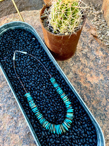 Turquoise Graduated Disk and Heishi Necklace