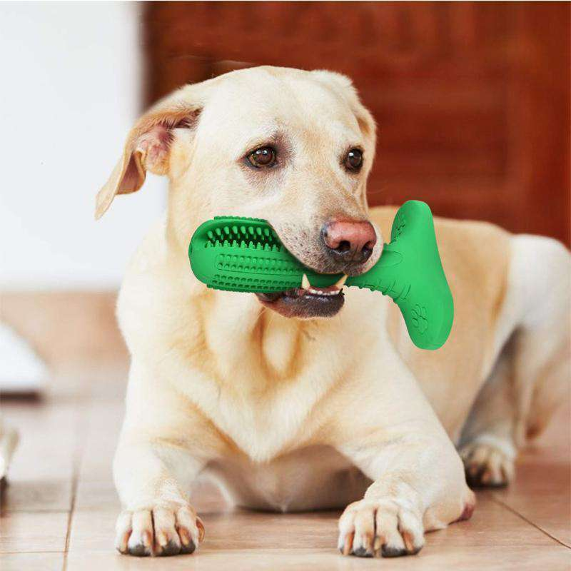 DOG RUBBER CHEW TOOTHBRUSH
