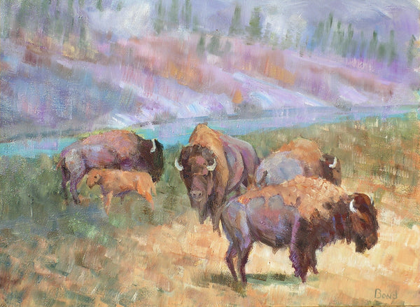 Bison - Cow and Calf
