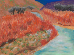 Red Brush, Rio Grande, Taos