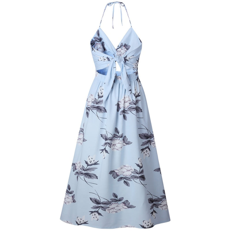 Francesca Maxi Dress in Baby Blue