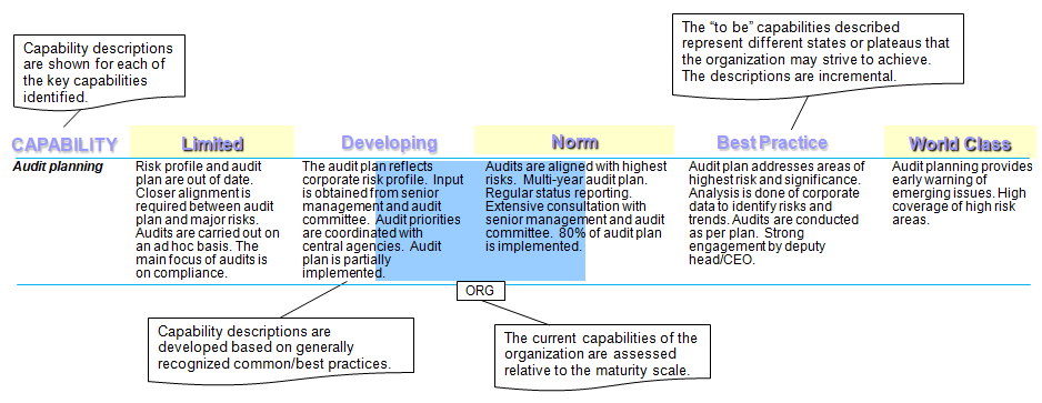 Audit Services Capability Assessment Tool