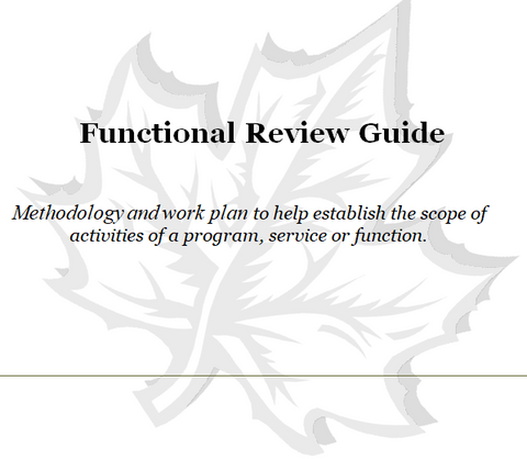Human Resources Management Functional Review-Public Sector
