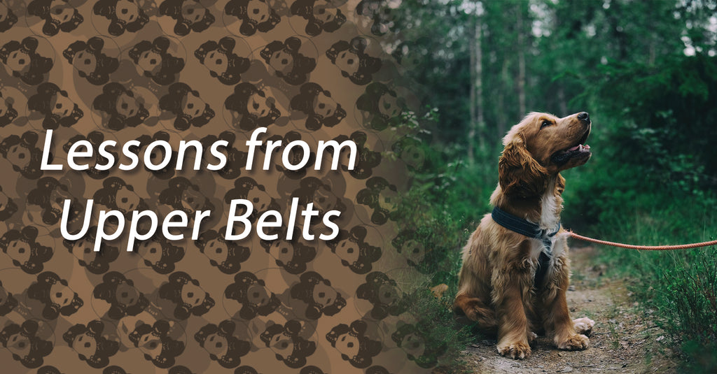 Lessons from Upper Belts