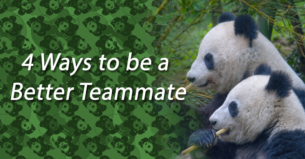 4 Ways to be a Better Teammate