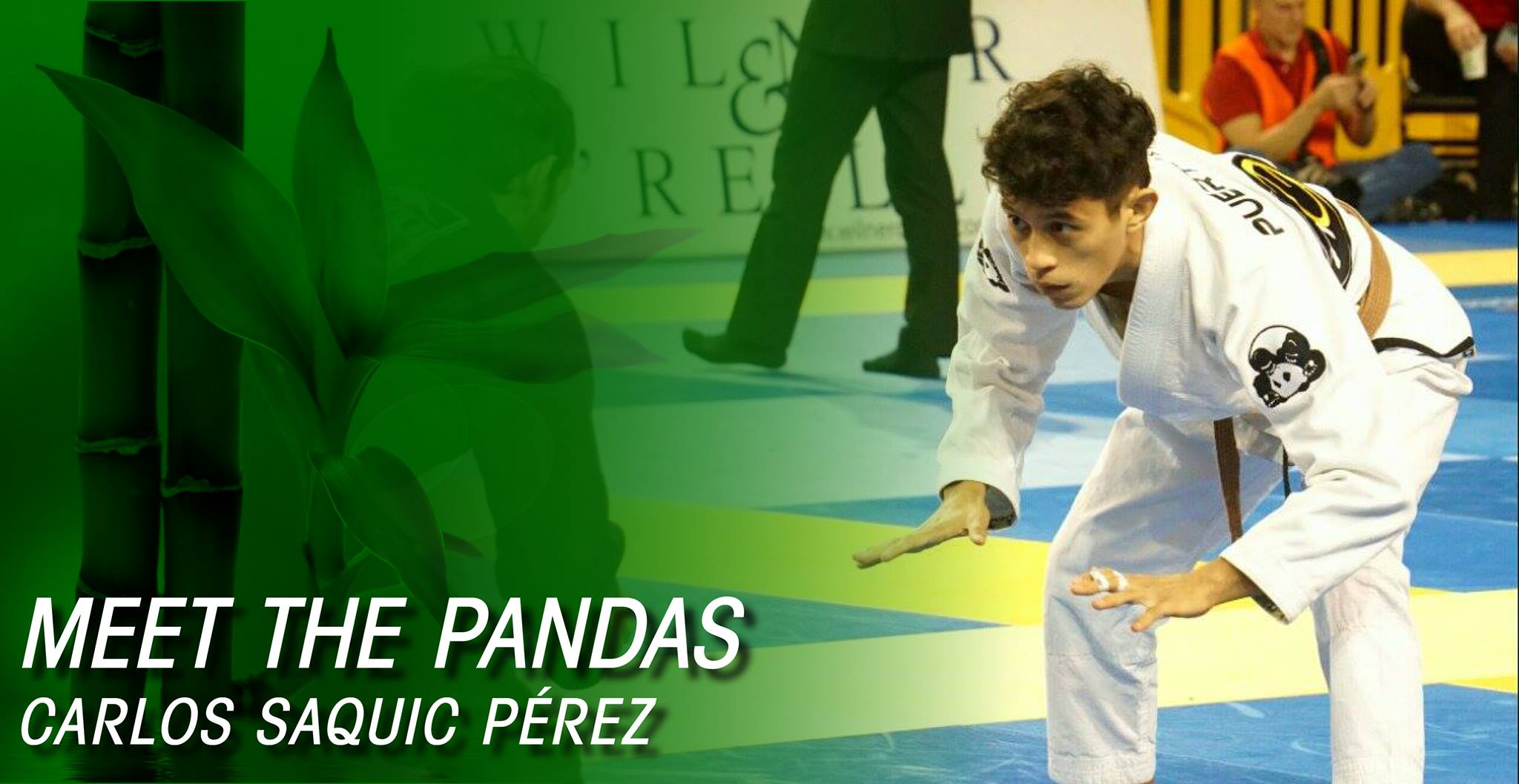 Meet the Pandas: From the Pool to the Mat - Carlos Saquic