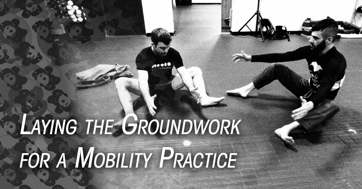 Laying the Groundwork for a Mobility Practice [Part 1