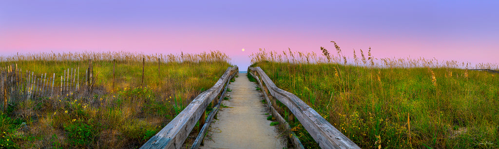 beach access, dune art prints, sand dunes canvas, north carolina coast, sunrise panorama, beach sunrise photos, sunrise photography