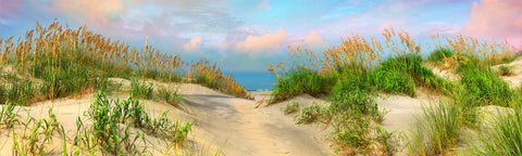 carolina photography, beach landscape, sea oats, sand dunes photography, wilmington nc beaches, photos, canvas art prints,