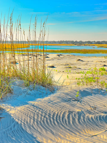 Marsh pictures, Marsh images, Marsh pictures, Fine art photography, North Carolina Beaches, Seaside style, Dune art prints, Sea oats on the beach, Sand dunes photography, Sand dunes canvas prints,