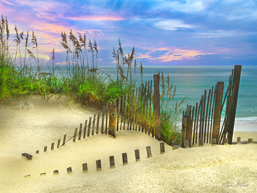 Fine art photography, North Carolina Beaches, Beach Access, Seaside style, Dune art prints, Sea oats on the beach, Sand dunes photography, Sand dunes canvas prints, purple sky,