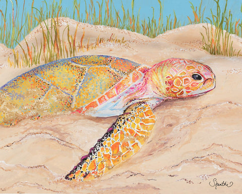 sea turtle art, sea turtle decor, sea life decor, sea turtle wall art, sea turtle art prints