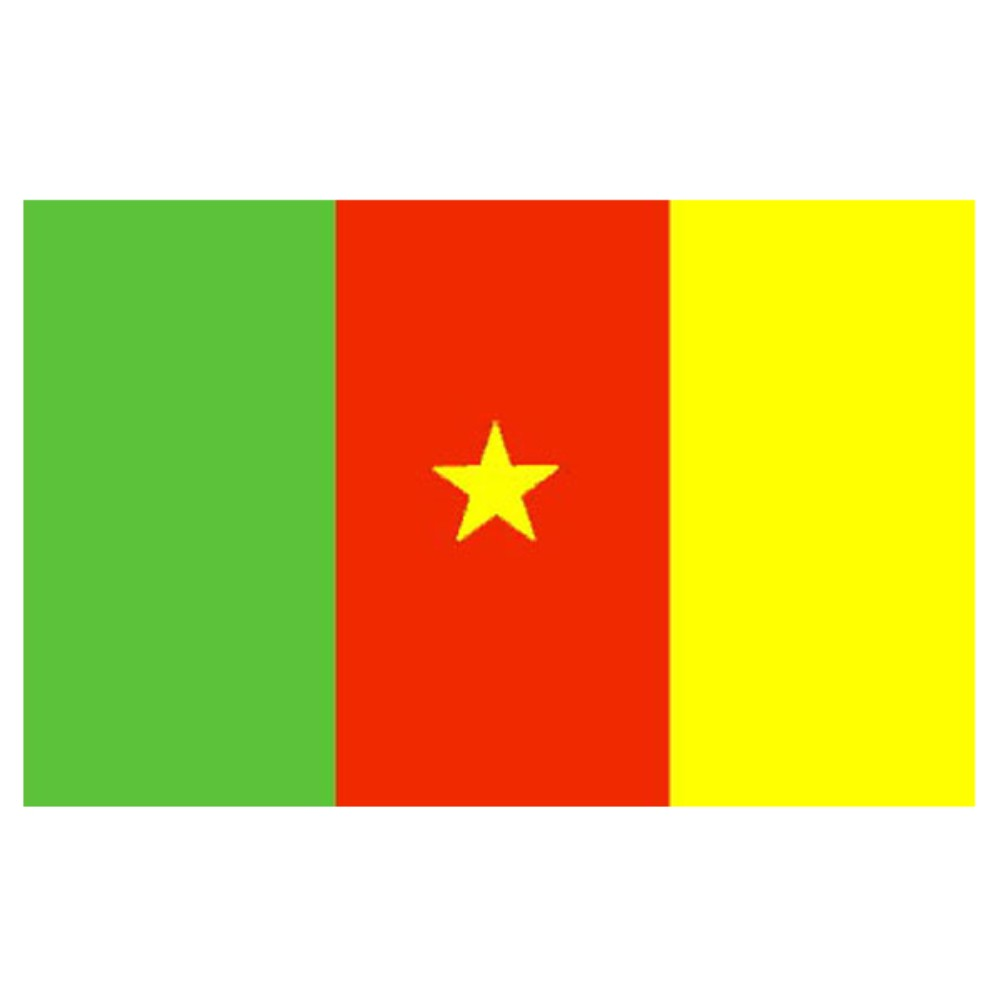 Cameroon Flag 5ft X 3ft