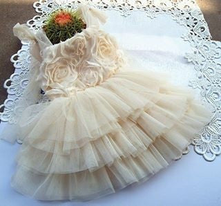 Baby & Girl Vintage Rosettes Dress - Dress24