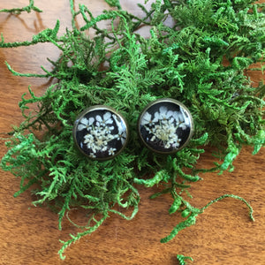 Queen Anne's Lace Studs (10mm)