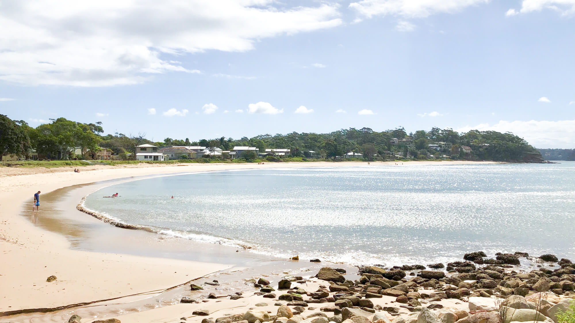best dog beaches sydney horderns beach bundeena