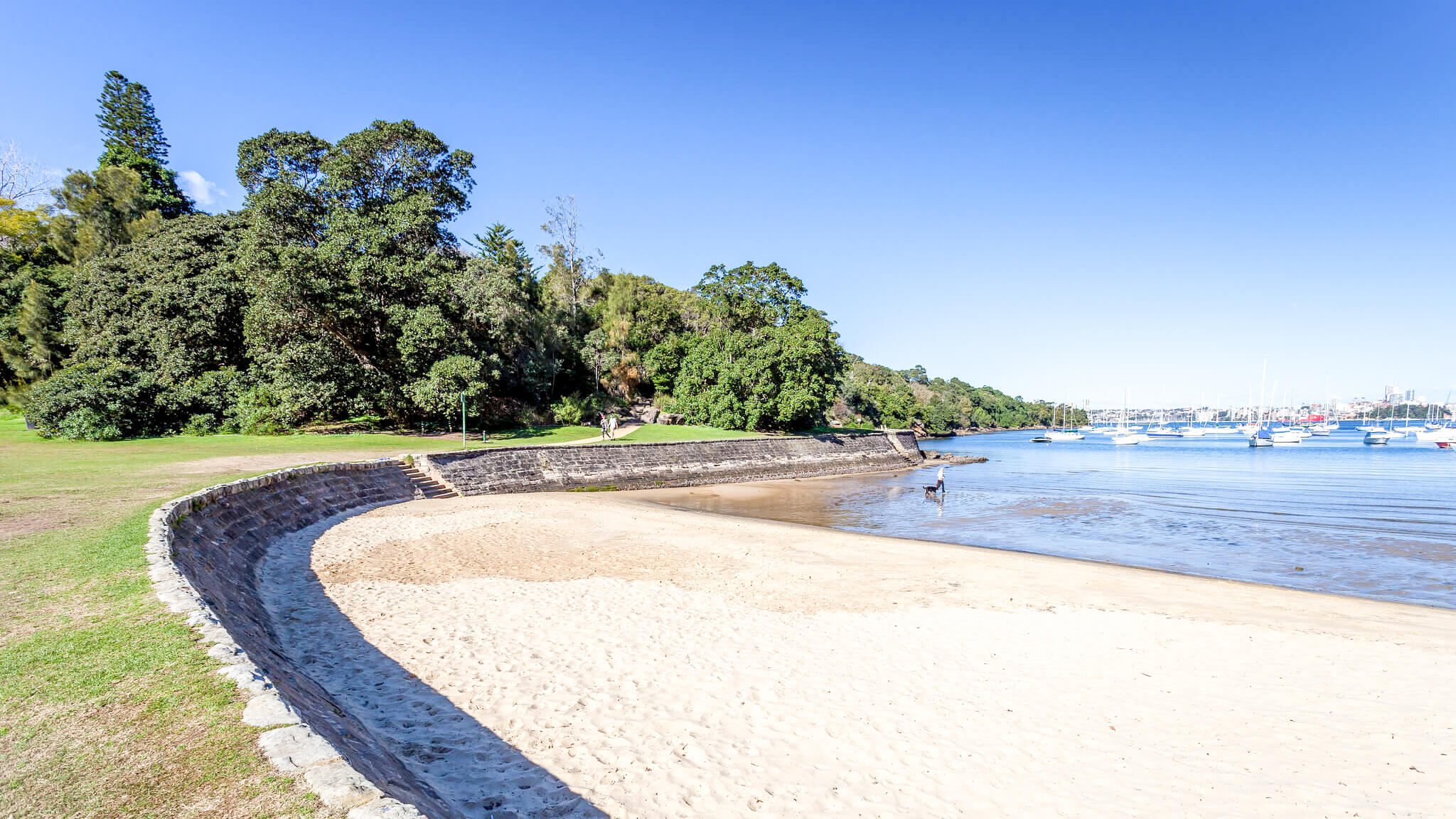 best dog beaches sydney sirius cove mosman 1