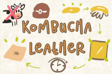 Kombucha Leather: Your Guide To SCOBY Leather