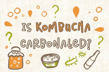 Is Kombucha Carbonated? How To Get The Perfect Fizz