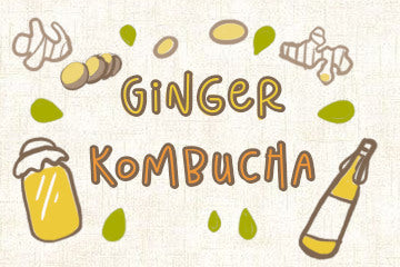 Ginger Kombucha: Guide To Brewing And Buying