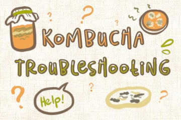 Kombucha Troubleshooting Guide: Every Problem, Every Solution