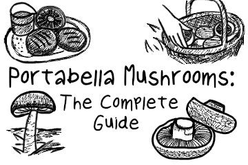 Portabella Mushrooms: The Complete Guide