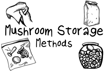 How To Store Mushrooms: Your Complete How To Guide