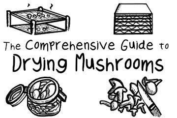 How To Dry Mushrooms: The Comprehensive Guide