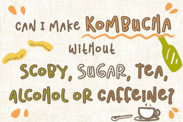 can_i_make_kombucha_without_tea_infographic