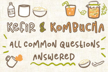 Kefir And Kombucha: All Common Questions Answered
