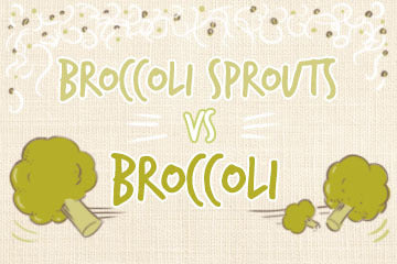 Broccoli Sprouts vs Broccoli | The Definitive Guide