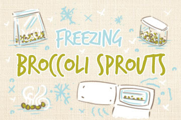 Freezing Broccoli Sprouts | The How To Guide