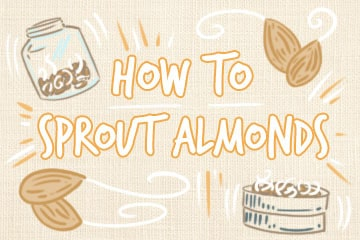 Sprouting Almonds: The Definitive Guide