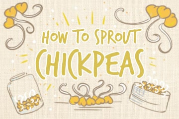 Sprouting Chickpeas: The Complete Guide