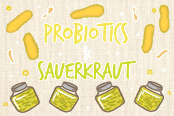 Probiotics And Sauerkraut: The Complete Guide