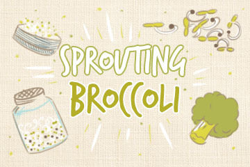 Sprouting Broccoli: The Complete Guide