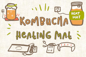 Kombucha Heating Mat And Pads: A Buyer's Guide