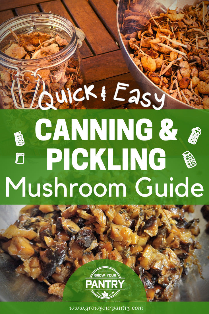 pickling_and_canning_mushrooms_infographic