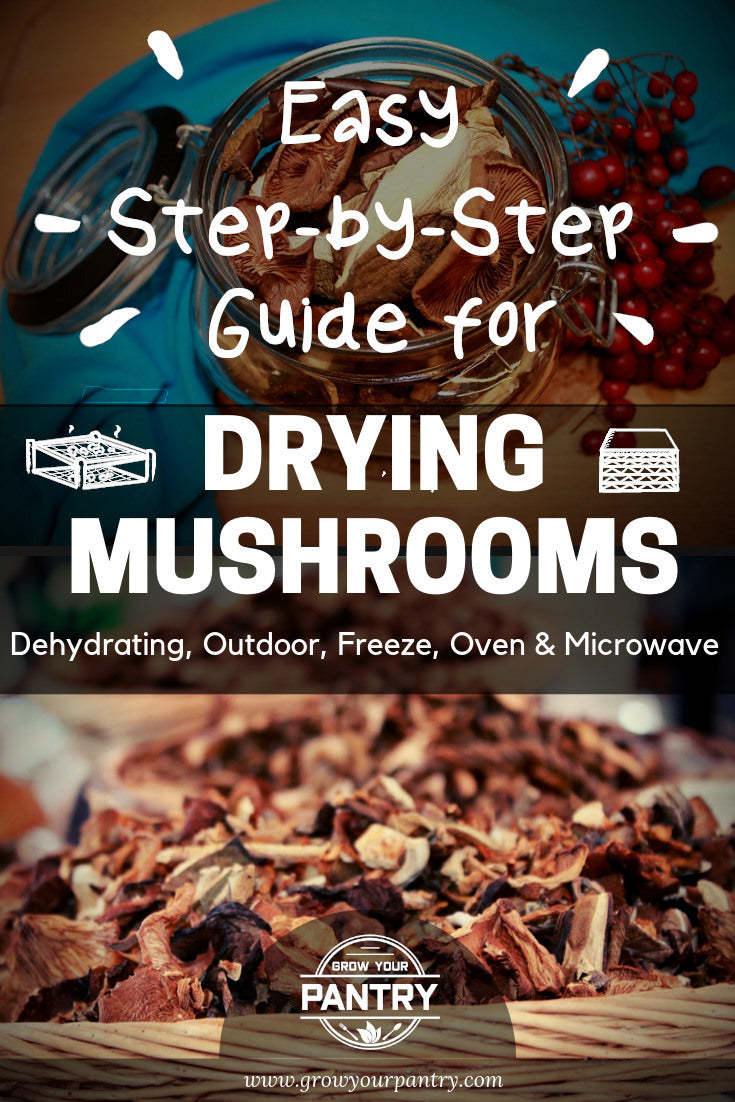 drying_mushroom_methods